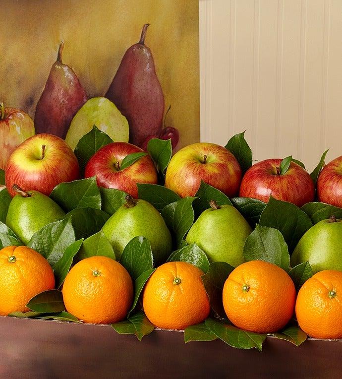 Arbor Harvest Supreme Fruit Box - gluten free